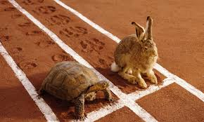 tortoise and the hare.jpg