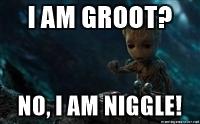 I am niggle